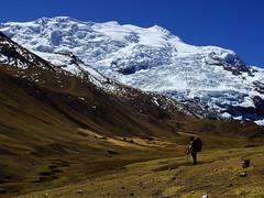 Cara Sur Ausangate (Mono Andes) Tags: andes perú ausangatetrek ausangate glacier glaciar backpacking trekking cordilleravilcanota