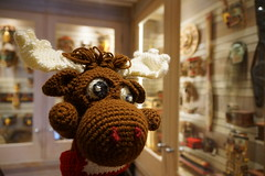 DSC00433 (The Crochet Crowd) Tags: crochetmoose amigurumi moose crochet doll alaska britishcolumbia thecrochetcrowd michaelsellick jeannesteinhilber danielzondervan crochetcruise mooseontheloose