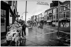 Blackpool # 11 (SvenConquest) Tags: street photography streetphotography streetfotografie spezial reportage dokumentation outdoor bw monochrome classicblackwhite noiretblanc city people urban conquest