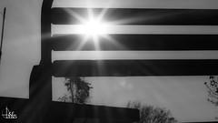 Urban Selection (Ukelens) Tags: ukelens schweiz swiss switzerland suisse svizzera schwarzundweiss schwarzweiss blackandwhite urban street streetphotography sun sonne licht lichter lichteffekt lichteffekte lightroom light lights lighteffects lighteffect shadow shadows contrast kontrast