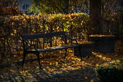 Emellan (Explore 2016-10-30) (nillamaria) Tags: fotosondag emellan fs161030 bänk höst löv bench leaves autumn