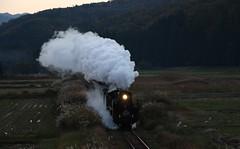 White smoke (yukky89_yamashita) Tags: sl c57180 slばんえつ物語号 smoke plume 西会津 福島 nishiaizu japan fukushima