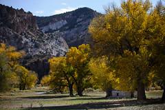Ranch in Rainbow Canyon, Nevada (nbanjogal) Tags: lincolncounty nevada