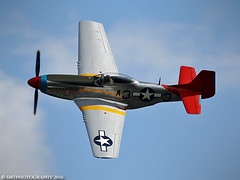 stang-1-1-1 (Stewart Taylor (SMT Photography)) Tags: photography photo piston p51 p51d nap51d northamerican northamericanp51mustang usaaf usa fighter wwii warbird worldwartwo nostalgia cadillacoftheskies topside peterteichman shuttleworth shuttleworthcollection theshuttleworthcollection oldwarden biggreentimemachine bedfordshire biggleswade airshow aviation aircraft air airdisplay flight flying flyingdisplay