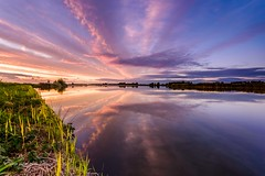 Mirror (Ellen van den Doel) Tags: grass lines stripes zonsondergang sunset water fotografie lijnen outdoor 2016 strepen orange clouds reflectie gras ellenvandendoel roze oranje lucht kleur pink oktober reflection sky cross goereeoverfklakkee color wolken trotsopflakkee stadaanhetharingvliet zuidholland nederland nl