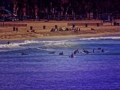 Life's a Beach... (/\ltus) Tags: life california southerncalifornia socal santamonica nothdr surf la losangeles ocean sony dschx80 superzoom surfing surfboard