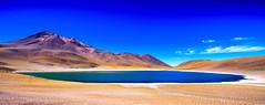 Chile 2013-2747 (sebtac) Tags: chile2013 chile 2013 outdoor reservanacionallosflamencos