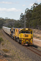 Empty Cows (PJ Reading) Tags: aurizon qr qrnational queensland rail railway train cargo goods freight locomotive qld australia transport transportation diesel northcoast ncl cattle livestock cow empty 2170class flinders