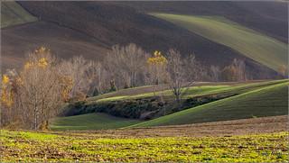 l'autunno nella campagna maceratese