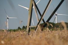 20130720_IMG_0086 (anriro96) Tags: elements heemsen nienburg feld ernte gras getreide blau blue sky rohrsen weser sun summer