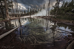Gentle and yet constant echoes of Geyser (ScorpioOnSUP) Tags: canon norrisgeyserbasin yellowstonenationalpark adventure boardwalk clouds geyser hotsprings landscape landscapephotography mountainrange nature outdoors pond reflections sky steam trees water