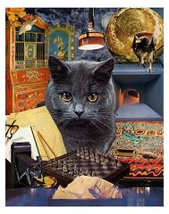 Scorpio - StarCat (tjager) Tags: astrology zodiac starcat scorpio livingferal cat eagle scorpion watersign catlover art collage analog