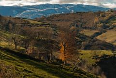 Cabaa (Oscar F. Hevia) Tags: cabaa otoo naturaleza montaa cottage autumn nature mountain asturias asturies espaa parasonatural principadodeasturias puertomarabio spain teverga