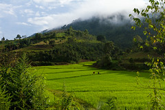 20161013-IMG_1912 (Konrad K. M.) Tags: myanmar kalaw shan