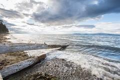 Rath trevor beach provincial park (...Ashish...) Tags: park sunset sea canada water canon waves vancouverisland parksville manfrotto provincial colrs trea rathtrevorbeach rathtrevorprovincialpark