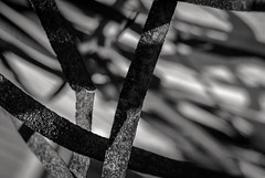 embrace the fury (Super G) Tags: sanfrancisco california abstract monochrome metal rust shadows unitedstates bokeh steel bands embrace hmbt nikon218