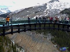 Glacier Walkway (cj berry) Tags: people canada river alberta valley rockymountains jaspernationalpark glassfloor sunwapta glasswalls glacierskywalk