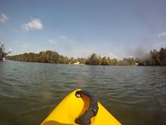 Dolphin, 2 (cell911) Tags: florida dolphin kayaking titusville porpoise merrittisland indianriver haulovercanal gopro merrittislandnwr