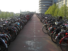 Bicycle Parking Lot, Train Station (Ted Tamada) Tags: amsterdam thenetherlands streetphotography cityscapes casio pointandshoot casioexilim exilim tamada streetlandscapes tedtamada tedtamadaphotography amsterdamcapitalofthenetherlands
