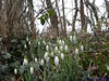 "02-03-2013 Kijkduin (13) • <a style=""font-size:0.8em;"" href=""http://www.flickr.com/photos/118469228@N03/14553978971/"" target=""_blank"">View on Flickr</a>"