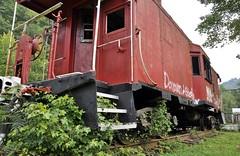 Delbarton, West Virginia (4 of 6) (Bob McGilvray Jr.) Tags: railroad party public train graffiti paint nw grafitti condoms display tracks caboose westvirginia urine isolated hangout trashed norfolkwestern delbarton