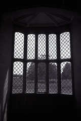 lattice window (pho-Tony) Tags: camera 3 film rollei 35mm point shoot wide panoramic ishootfilm 400 automatic prego r1 24mm nationaltrust ricoh compact micron 30mm ilfosol ricohr1 filmisnotdead rpx rolleipregomicron ilfosol3 rolleirpx400 multicamsource filmrolleirpx400