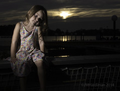 Portrait on Fence (jim29028) Tags: sunset portrait usa fence olympus zuiko 43 e5 2014 canobielakepark zd salemnewhampshire fourthirds offcameraflash strobist 1260mmswd portraitinlandscape