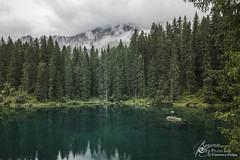 Wandern (Separate Sky) Tags: summer white black mountains tree nature water landscape lost austria waterfall august gorge wandern wander