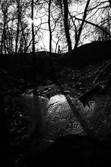 reflections (Indigo Skies Photography) Tags: camera trees blackandwhite sun reflection digital lens photography aperture rocks exposure flickr image australia grampians victoria iso photograph sunflare hallsgap tamronsp2470mmf28divcusd nikond610