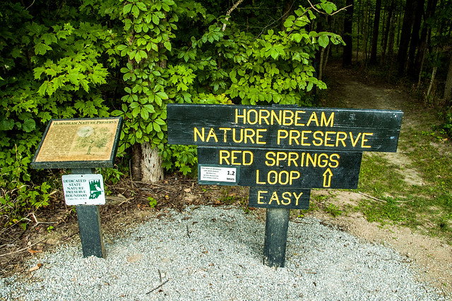 Hornbeam Nature Preserve - August 16, 2014