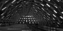 Chatham Dockyard shed (Cactipal) Tags: building wooden large chatham boatyard dockyard cactipal