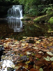 Fall's Here as they would say in the US (RoystonVasey) Tags: autumn west fall apple leaves upload waterfall leaf 5 yorkshire north email explore dales burton iphone roaming ydnp