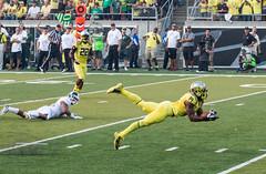 Ducks vs Michigan State-838 (boudreaudavid83) Tags: college football