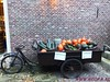 """Baarn                13-09-2014        40 Km   (2) • <a style=""""font-size:0.8em;"""" href=""""http://www.flickr.com/photos/118469228@N03/15242491921/"""" target=""""_blank"""">View on Flickr</a>"""