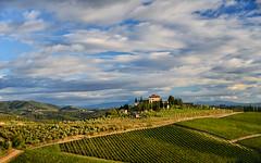 Tuscan Landscape (jan lyall) Tags: 2 summer sky italy clouds landscape estate tuscany rada vinyard