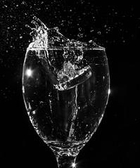 Splash (Valmirez) Tags: macro monochrome wine splash pretoebranco vinho blackandewhite