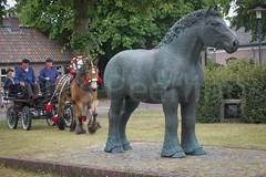 DSC_2216 (Ton van der Weerden) Tags: horses horse dutch de cheval belgian nederlands belges draft chevaux belgisch trait gerwen trekpaard trekpaarden