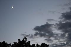 (helena_rlima) Tags: lua anoitecer sombras brilho escuridão