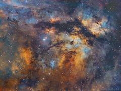 Chiaroscuro in Cygnus, the Butterfly Nebula (www.moonrocksastro.com) Tags: astrophotography nebula stelle stars nebulosa astronomia astronomy astrofotografia takahashi fsq106 star astro astrodon fast cosmos dso deep space nebulosity nebulae sky skies universe textur texture cloud ederblad 214 ngc 7822 sharpless 171 sh2171 pillars creation sxvrh18 eq6 skywatcher mn190 starlight xpress emission cepheus best night hubble qhy5 phd baader deepspace moonrocks abstract surreal outdoor cavern cave neq6 gamma cyg butterfly narrowband vixen vsd100 astrograph