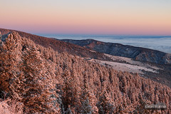 Frosted Slopes (kevin-palmer) Tags: bighornmountains bighornnationalforest dayton wyoming highway14 sandturn scenic view overlook early morning dawn sunrise sunny sunshine clear snow snowy fresh snowfall cold frosty fall autumn october nikond750 tamron2470mmf28 beltofvenus pink blue pine trees fog foggy white sky horizon