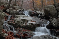 Montseny (Nordwest700) Tags: nordwest700 canon7d nd400 montseny