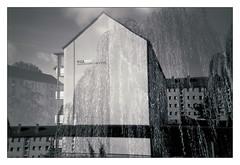 analog - Lomo LCA+ - Kodak BW400 CN (expired) (tom-schulz) Tags: lomolca lomo doubleexposure mehrfachbelichtung film 35mm analog sw bw stralsund haus weide frame gimp monochrom