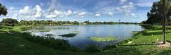(nickmickolas) Tags: crescentlake crescentlakepark 2016 stpetersburg fl