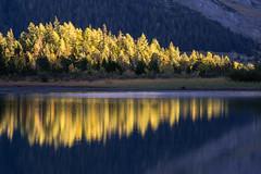 Une bande de lumire baigne le bleu cobalt de Derborence. (Valentin le luron) Tags: 20161020 nature nikon 800 e paysage lac montagne automne mlzes couleur lumire reflet derborence valais romandie suisse yves paudex lausanne