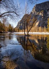 Yosemite National Park (Eric Zumstein) Tags: yosemite river mercedriver nationalpark tree snow reflection
