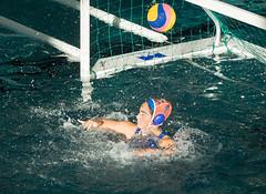 2C041433 (roel.ubels) Tags: len euro league waterpolo sport topsport utrecht uzsc 2016 krommerijn women