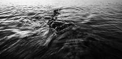 341/366 (romainjacques17) Tags: canon 6d 365project 365 project365 picoftheday ef1635mmf4 ef1635mm 1635mm 16mm blackwhite bw nb noirblanc ocean sea wave longexposure long exposure larochelle france seascape