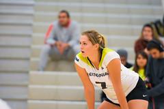 Women's Varsity Volleyball vs. Canadore-69 (centennial_colts) Tags: green scream centennial college ocaa ocaacentennialcolts colts womens volleyball varsity 2016