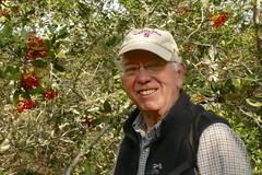 Carl and toyon (openspacer) Tags: carl jasperridgebiologicalpreserve jrbp people toyon shrub