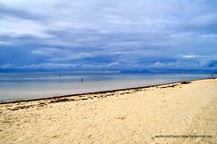 Morning at Quinale Beach Anda Bohol (marxtermind) Tags: bohol anda philippines travel southeastasia asia beach quinalebeach nature